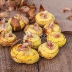 Убираем луковицы гладиолусов и сохраняем их здоровыми в золе
