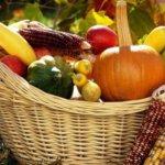 Лунный посевной календарь садовода-огородника на сентябрь 2020